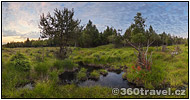 Play virtual tour - Novodomské Peat Bog