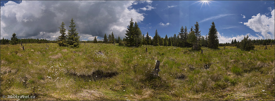 Play virtual tour - Great Grouse Mating Area